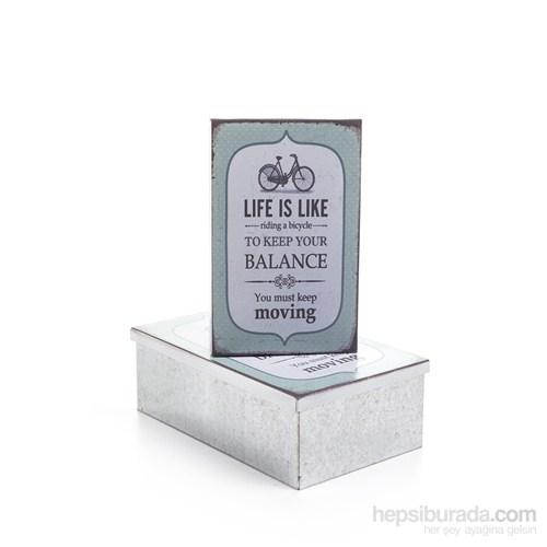 Balance 2Li Metal Kutu