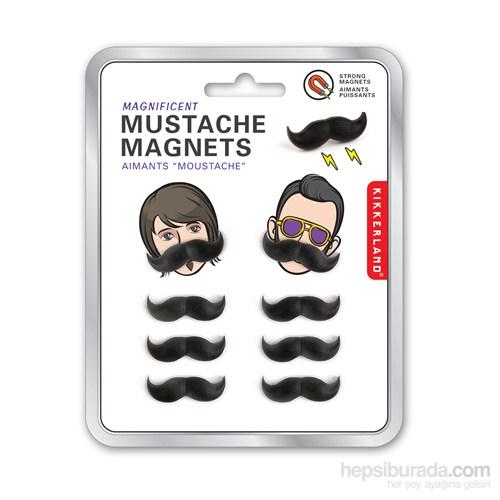 Bıyık Magnet 8'Li Set
