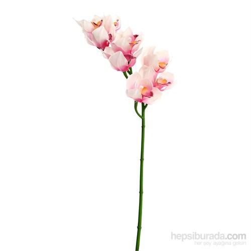 Orkide Lux 9 Kandil Pembe Beyaz
