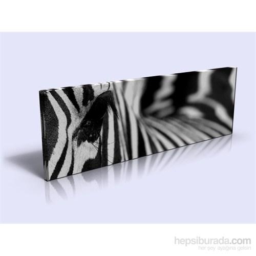 Arte Zebra Kanvas Tablo