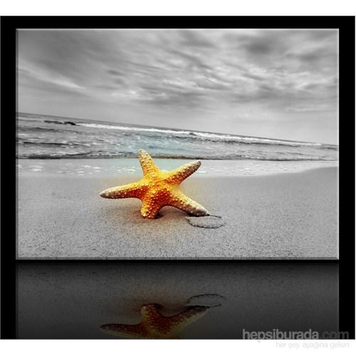 Arte Deniz Yıldızı Kanvas Tablo