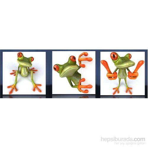 Kurbağalar Kanvas Tablo