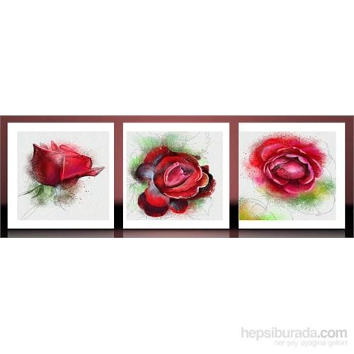Kırmızı Çizim Güller Kanvas Tablo