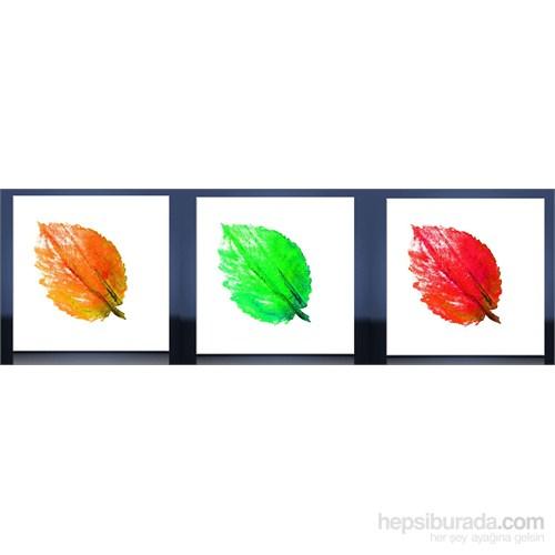 Renkli Yapraklar Kanvas Tablo
