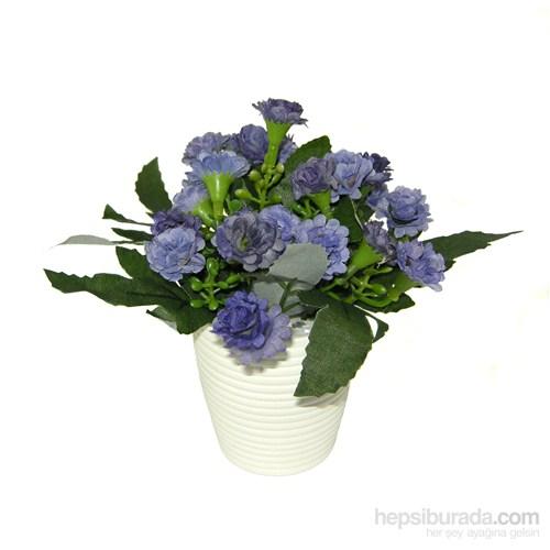Lila Çıtır Çiçekler