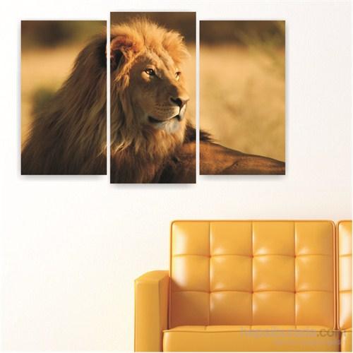 Dekoriza Aslan 3 Parçalı Kanvas Tablo 80X50cm