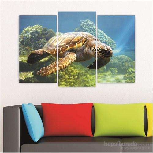 Dekoriza Deniz Kaplumbağası 3 Parçalı Kanvas Tablo 80X50cm