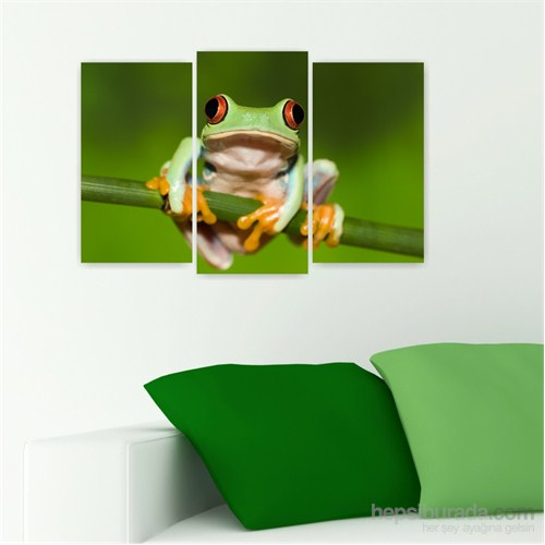 Dekoriza Sevimli Kurbağa 3 Parçalı Kanvas Tablo 80X50cm