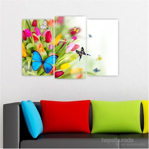 Dekoriza Renkli Çiçekler & Kelebekler 3 Parçalı Kanvas Tablo 80X50cm