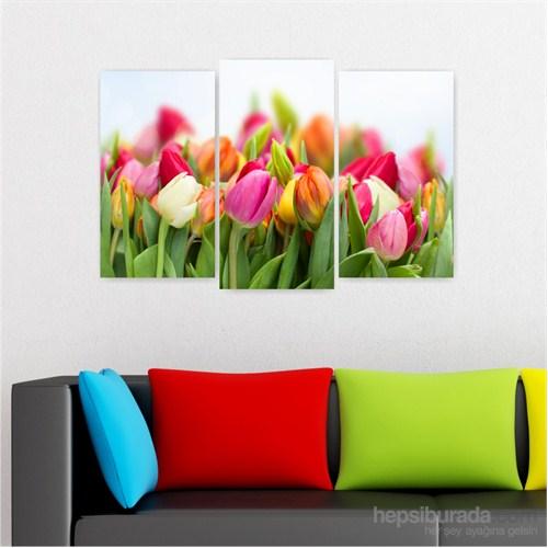 Dekoriza Renkli Laleler 3 Parçalı Kanvas Tablo 80X50cm