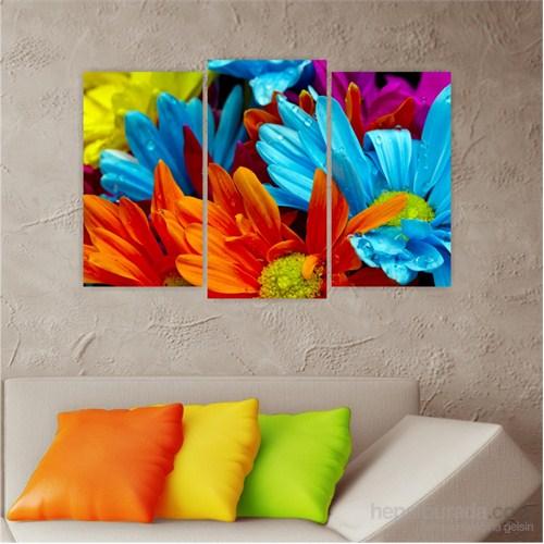 Dekoriza Renkli Papatyalar 3 Parçalı Kanvas Tablo 80X50cm