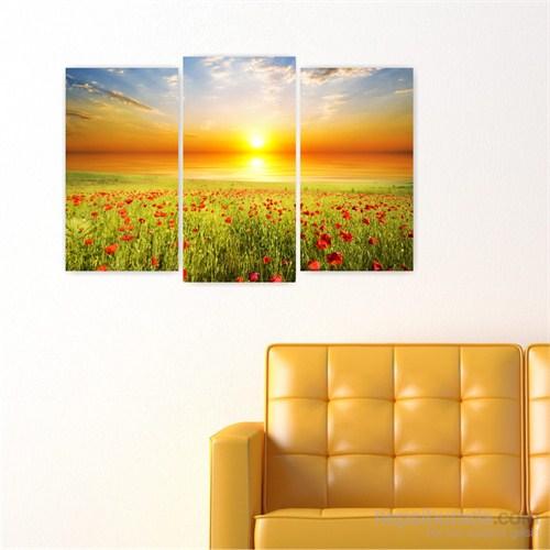 Dekoriza Gün Batımında Kırmızı Çiçekler Kanvas Tablo 3 Parçalı Kanvas Tablo 80X50cm