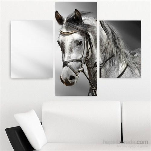Dekoriza Siyah & Beyaz At 3 Parçalı Kanvas Tablo 125X90cm
