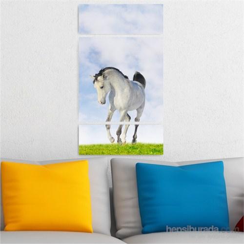 Dekoriza Beyaz At 3 Parçalı Kanvas Tablo 70X125cm