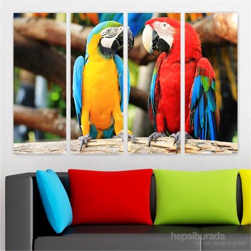 Dekoriza Papağan & Aşk 4 Parçalı Kanvas Tablo 127X80cm