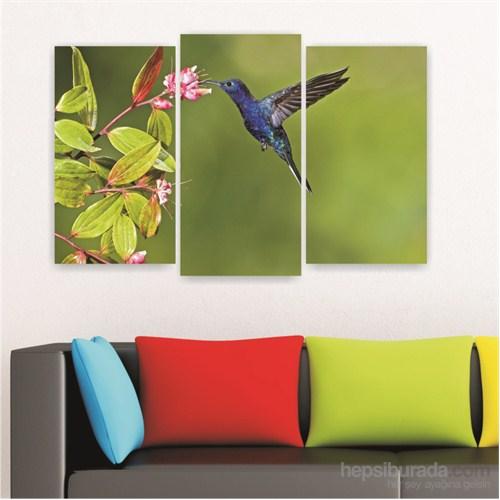 Dekoriza Kuş & Çiçek 3 Parçalı Kanvas Tablo 80X50cm
