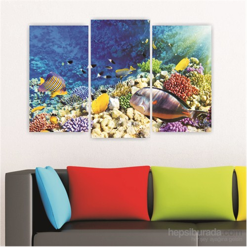 Dekoriza Okyanus Balıkları 3 Parçalı Kanvas Tablo 80X50cm