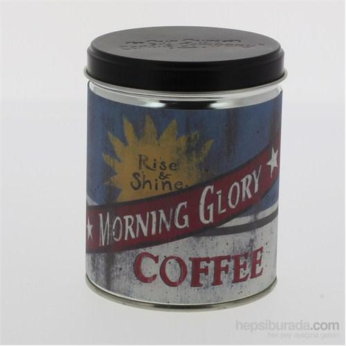 Morning Glory Teneke Mum