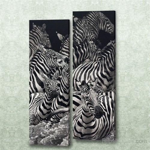 Dekorjinal 2 Li Dikdörtgen Kanvas Tablo Seti Sel012