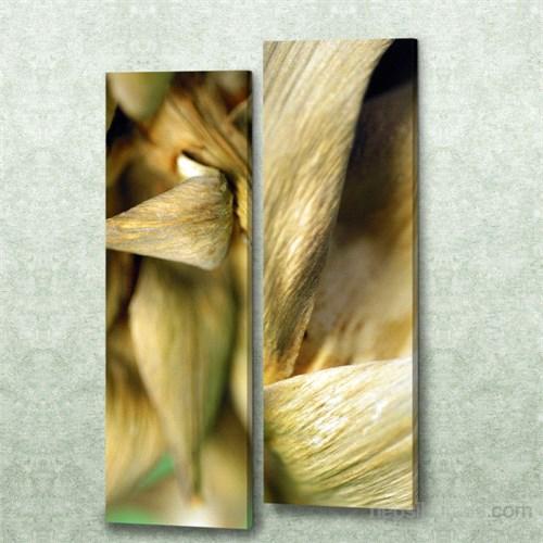Dekorjinal 2 Li Dikdörtgen Kanvas Tablo Seti Sel020