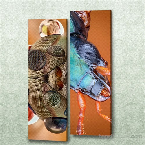Dekorjinal 2 Li Dikdörtgen Kanvas Tablo Seti Sel024