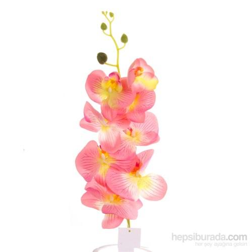 Yedifil Orkide Dekoratif Çiçek