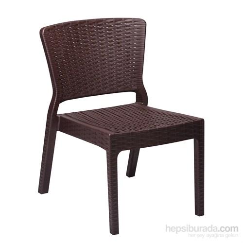 Antares Sandalye Venge
