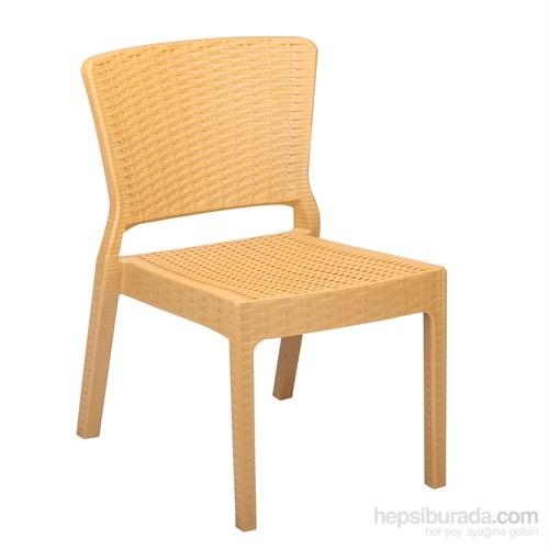 Antares Sandalye Ahşap