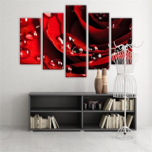Dekoratif 5 Parçalı Kanvas Tablo-5K-Hb061015-81