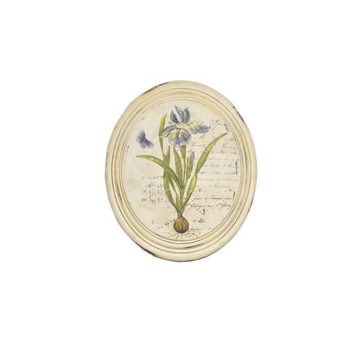Noble Life Mavi Kök Çiçek Oval Tablo