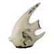 İhouse Lp3699 Dekoratif Balık Figürü Krem
