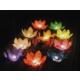 Toptancı Kapında Nilüfer (Çiçek) Su Feneri (3 Adet)