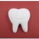 Yıldız Hobi Diş Silikon Sabun ve Kokulu Taş Kalıbı