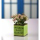 Gold Case Seramik Baskılı Fıstık Yeşili Saksılı Çiçek Demeti Pembe Bymst125