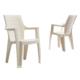 Novussi Contract Elegance Wood Sandalye - Krem Rengi