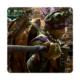Fotografyabaskı Bardak Altlığı Baskı 4'lü Set Ninja Kaplumbağalar Donatello