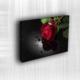 Doku Canvas Baskı Çiçek- CIGE018