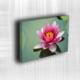 Doku Canvas Baskı Çiçek- CIGE545