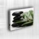 Doku Canvas Baskı Çiçek- CIGE003