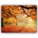 Montaine Dekoratif MDF Tablo 30x40 cm MT74