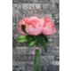 Yapay Çiçek Deposu Yapay Çiçek (Gelin Çiçeği 5li Pembe Şakayık Demeti)