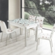 Evinizinmobilyasi İmalattan Satış Açılır Cam Mutfak Masası Masa Sandalye Bordo Halka Desenli(4 Sandalyeli)