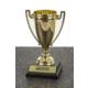 Kişiye Özel Ödül Kupası - GREATEST 9X17,5CM