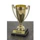 Kişiye Özel Ödül Kupası 9X17,5CM