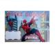 Partypark Örümcek Adam Doğum Günü Afiş