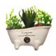 Decotown Büyük Kaktüs Masaüstü Dekoratif Yapay Çiçek