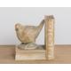 Madame Coco Kitap Desteği Kuş