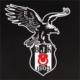 Partypark Beşiktaş Basic Parti Seti (16 Kişilik)