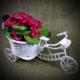 Badem10 Saksılı Dekoratif Bisikletli Yapay Menekşe Çiçek