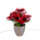 Vitale Saksıda Kırmızı Yapay Çiçek